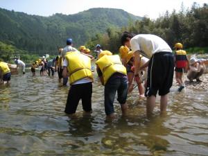 平成25年5月22日馬瀬川広瀬堰堤上で水生生物の調査