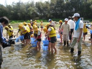 平成25年5月22日馬瀬川広瀬堰堤上であゆ放流